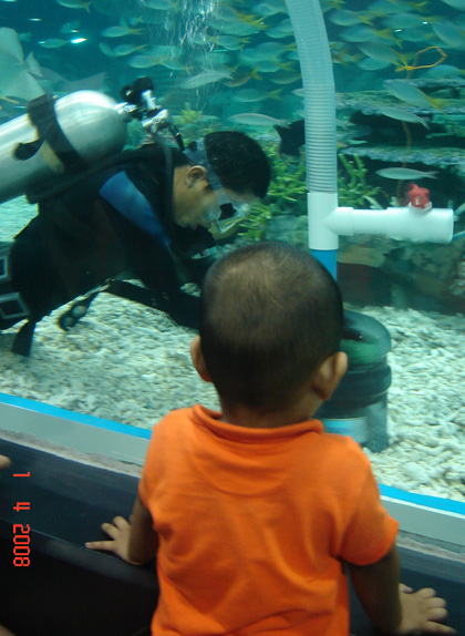 at Manila Ocean Park. Sean's busy watching the diver who's cleaning the big aquarium