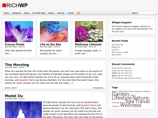 Free Daily News WP Theme
